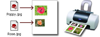 Photo Print Pilot - software for printing photos