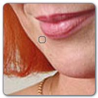 makeup_step3 MakeUp Instrument Makyaj Yapma Programı Türkçe İndir Fotoğrafdaki Yüze Rütuş Yapma