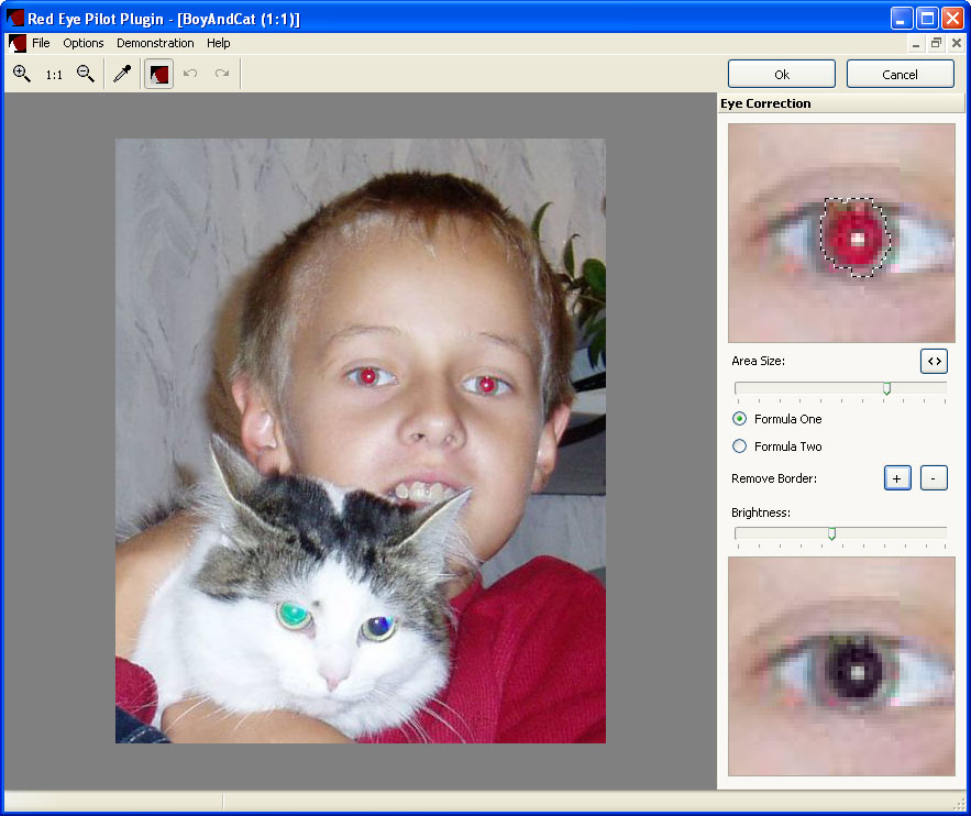 Plugin for red eye removal